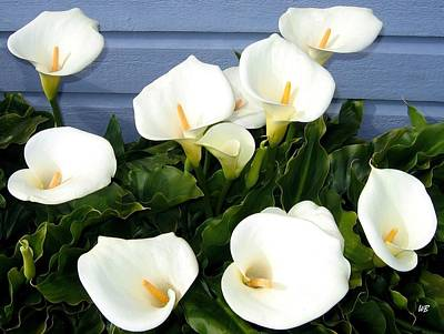 Photograph - Calla Lilies- Oregon by Will Borden