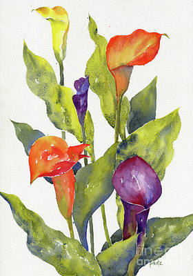 Painting - Calla Lilies by Pat Katz