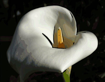 Digital Art - Calla Lilly by Ann Tracy