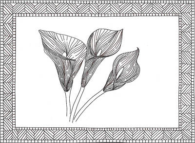 Lillies Drawing - Calla Lilly by Sharon White
