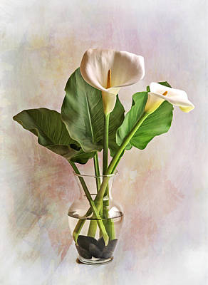 Photograph - Calla Lily Stilllife by Wes and Dotty Weber