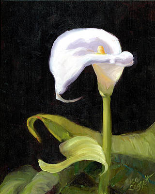 Painting - Calla Lily by Alice Leggett