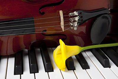 Keyboards Photograph - Calla Lily And Violin On Piano by Garry Gay