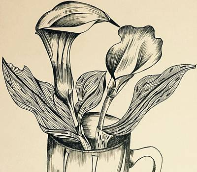 Calla Lily Flower Drawings Page 2 of 2  Fine Art America