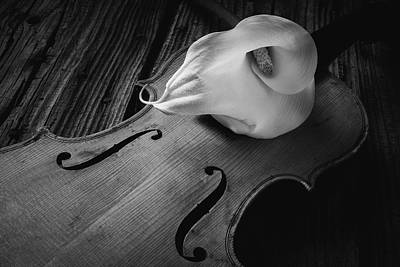 Abstract Flowers Images Photograph - Calla Lily On Violin Black And White by Garry Gay