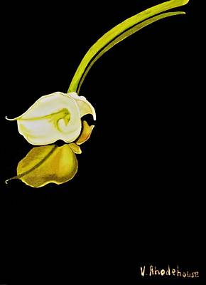 Painting - Calla Lily Reflection by Victoria Rhodehouse