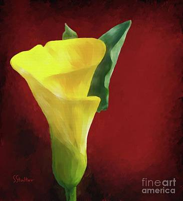 Painting - Calla Lily - Yellow by Shirley Stalter
