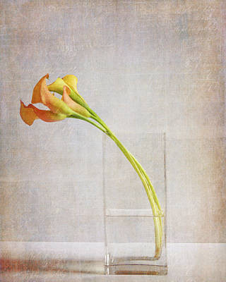 Photograph - Callas In Vase by Rebecca Cozart