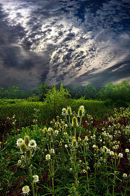 Photograph - Calling Home by Phil Koch