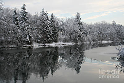 Photograph - Calm And Frosty by Jutta Maria Pusl