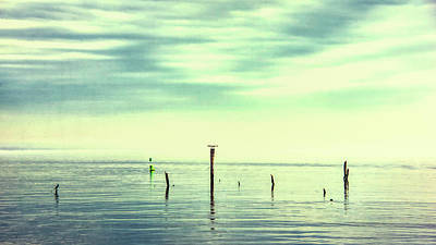 Photograph - Calm Bayshore Morning N0 1 by Gary Slawsky