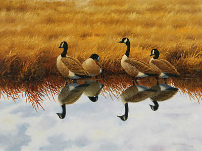 Wall Art - Painting - Calm Creek Canada Geese by Guy Crittenden