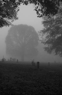 Photograph - Calm Foggy Morning by Gwendolyn Christopher