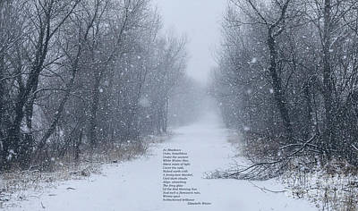 Photograph - Calm Of Winter by Elizabeth Winter