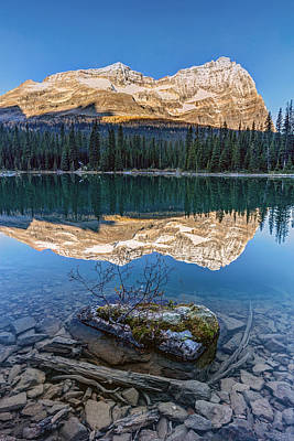 Photograph - Calm O'hara Lake And Reflection At Sunrise by Pierre Leclerc Photography