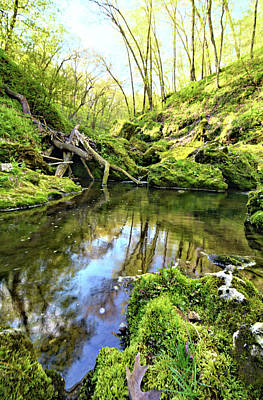 Photograph - Calm Pools by Bonfire Photography