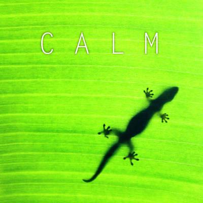Calm. Art Print