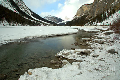 Photograph - Calm Water Along The Icefields Parkway by Adam Jewell