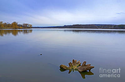 Photograph - Early Spring Calm by Charline Xia