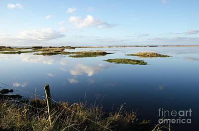 Photograph - Calm Wetland by Kennerth and Birgitta Kullman