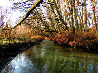 Photograph - Calming River Walk by Marie Jamieson