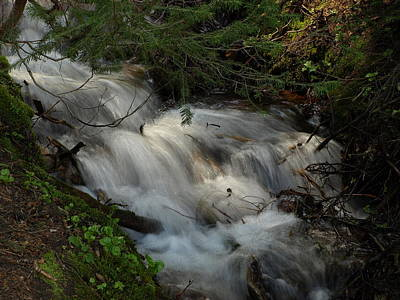 Photograph - Calming Stream by DeeLon Merritt