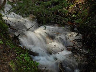 Photograph - Calming Stream by DeeLon Merritt