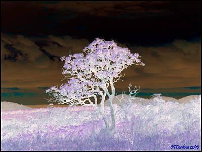 Meditative Digital Art - Beyond Reality by Carmen Cordova