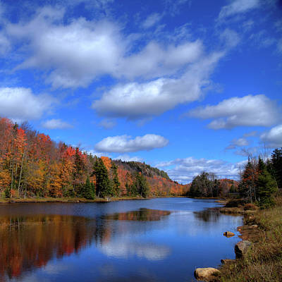 Calmness On Bald Mountain Pond Art Print by David Patterson