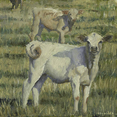 Calves In The Pasture Art Print by John Reynolds