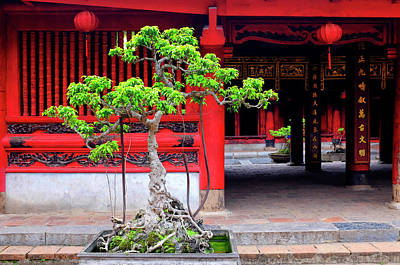 Photograph - Temple Of Literature by Fabrizio Troiani