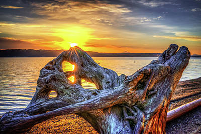 Photograph - Camano Sunrise by Spencer McDonald