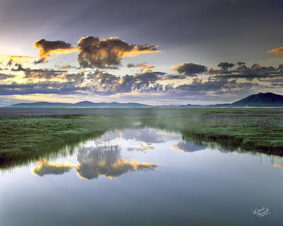 Restful Photograph - Camas Marsh by Leland D Howard