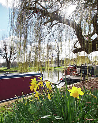 Photograph - Cambridge Riverbank In Spring by Gill Billington