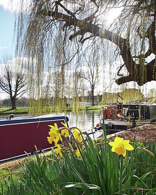 Photograph - Cambridge Riverbank In Spring by Gill Billington