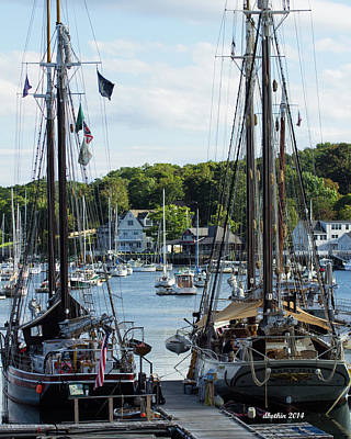 Photograph - Camden Maine 4 by Dick Botkin