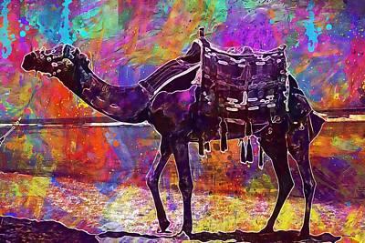 Dromedary Digital Art - Camel Animal Desert Dromedary  by PixBreak Art