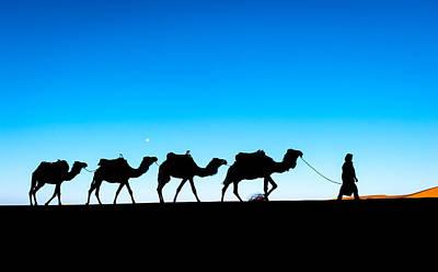 Camel Caravan On The Sahara Desert Art Print