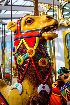 Fanciful Photograph - Camel Carrousel Ride by Garry Gay