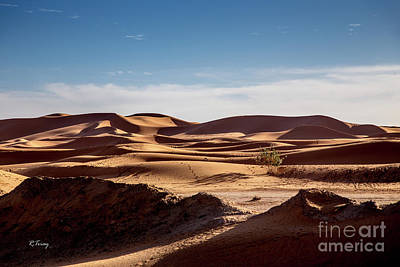 Photograph - The Sahara's Desert Dunes by Rene Triay Photography