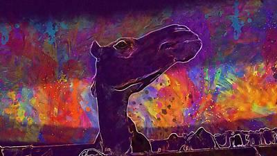 Dromedary Digital Art - Camel Dromedary Animal Head Desert  by PixBreak Art