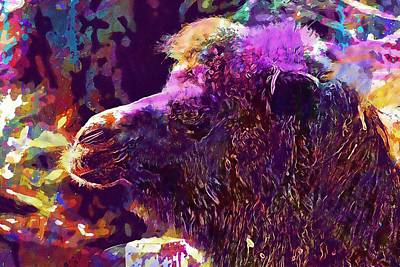 Dromedary Digital Art - Camel Dromedary Animal Hump Nature  by PixBreak Art