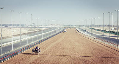 Photograph - Camel Racing Track In Dubai by Alexey Stiop