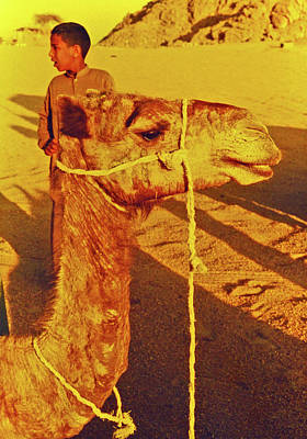 35mm Photograph - Camel Ride by Elizabeth Hoskinson