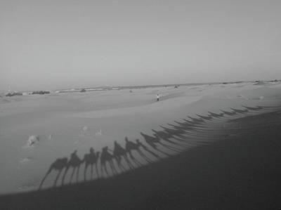 Exploramum Photograph - Camel Shadows - Shades Of Grey by Exploramum Exploramum