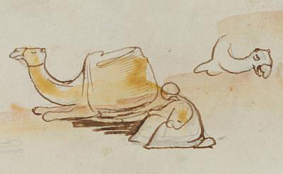 Drawing - Camel Studies by Edward Lear