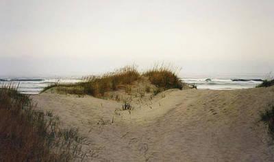 Photograph - Camelback Dunes by Nadalyn Larsen