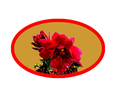 Digital Art - Camellia Bg Gold by The MUSEUM Artist Series jGibney