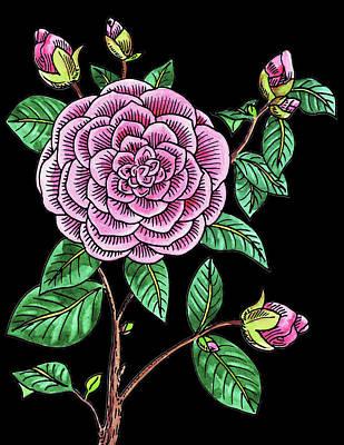 Painting - Camellia Flower Watercolour  by Irina Sztukowski