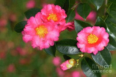 Painting - Camellia Pink by Deborah Benoit